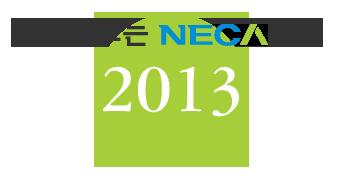 한눈에 보는 NECA 연구 : 2013